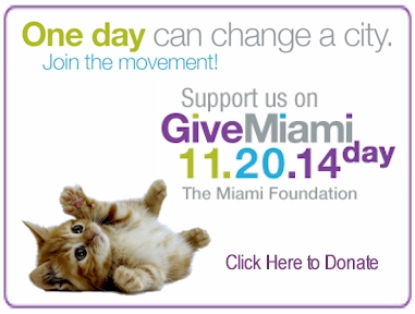 givemiami-2014--front-ad